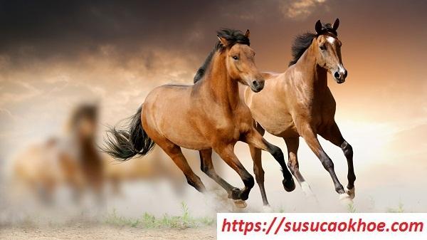 Nằm mơ thấy ngựa là điềm gì, đánh con gì?